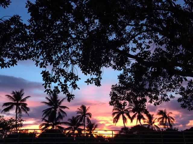 Hawaiiに想いをはせる~